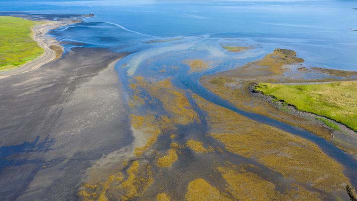 Flussmündung Island