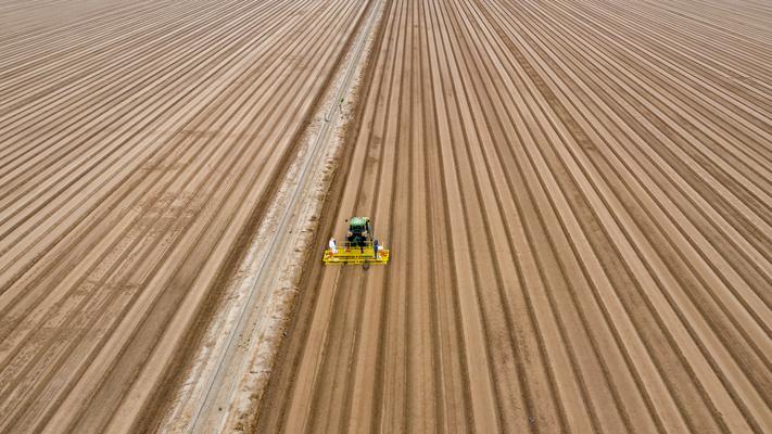 Ackerbau bei Mexicali California