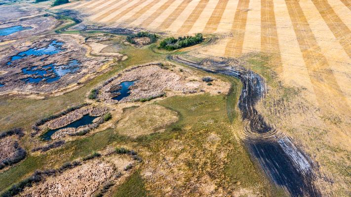 Wo sich Natur und Landwirtschaft treffen Provinz Manitoba Canada