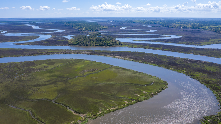 Sumpflandschaft bei Darien Georgia USA