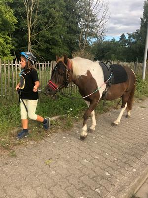 Randl erste Ponybandenstunde: Macht er toll!