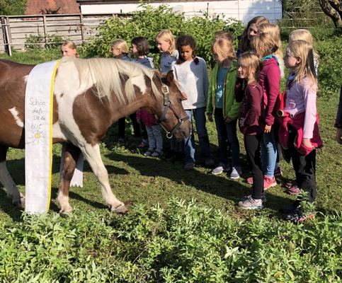 Übernachtung im Pferdestall (September 2019): Wir heißen Randl willkommen!