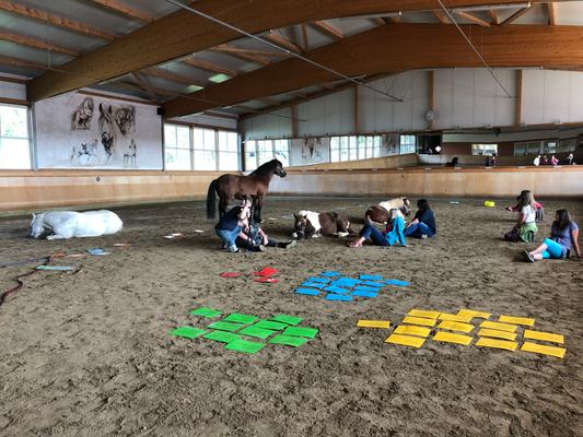 Unsere Herde und wir beim Horse&Spirit Festival 2019 in Heimsheim