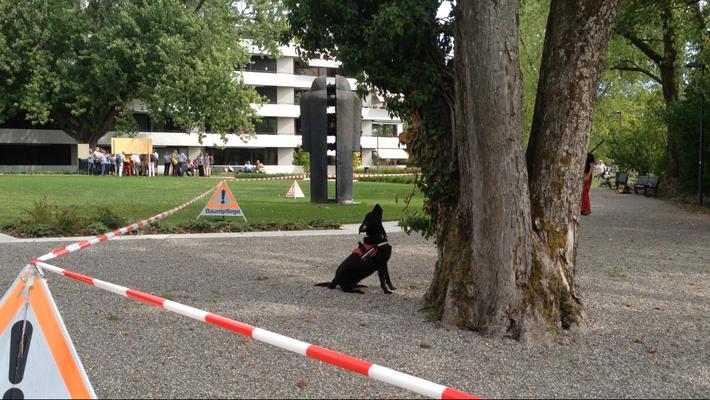 ALB Spürhunde Maisha bei der Anzeige (Foto: Norma Kleiber)