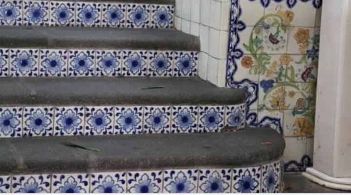Escalones recinto con peraltes de Azulejo