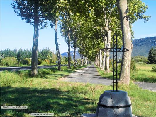 2015 Entrée du village sur RN (côté Perpignan)