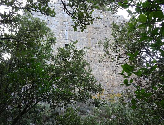Base du Donjon XIIe siècle