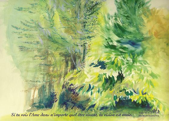 R21-Les arbres sensitifs