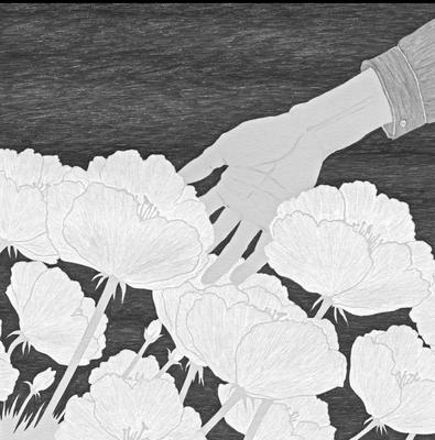 小説すばる 09月号(2017)『千羽びらき』酉島伝法著 挿絵 出版:集英社