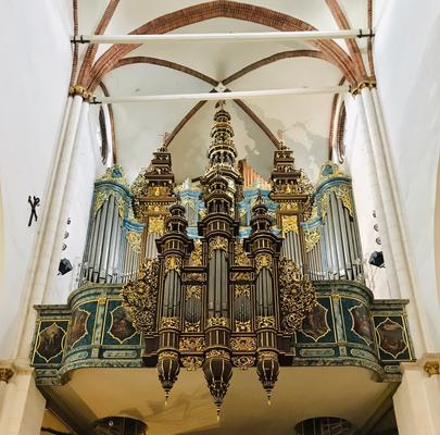 Höhepunkt des Doms ist die prächtige Walcker-Orgel von 1884 aus Ludwigsburg. Zu ihrer Entstehungszeit war sie mit 6718 Pfeifen, 124 Registern und 4 Manualen die größte Orgel der Welt, ein Konzertbesuch ist ein besonderes Erlebnis.