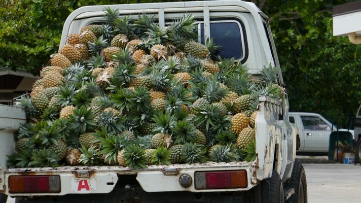 Huahine ist auch eine Ananasinsel