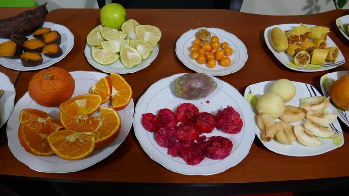 Früchte-Degu in der Schule