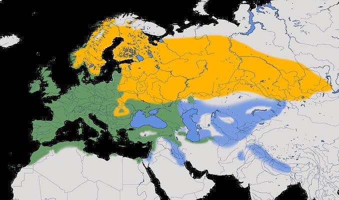 Karte zur Verbreitung des Buchfinkens