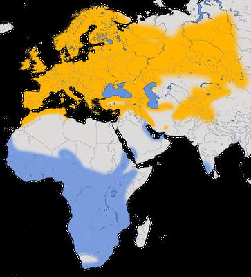 Karte zur Verbreitung der Mehlschwalbe