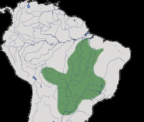 Karte zur Verbreitung des Nacktgesichthokkos