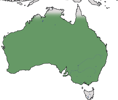 Karte zur Verbreitung der Spitzschopftaube (Ocyphaps lophotes)
