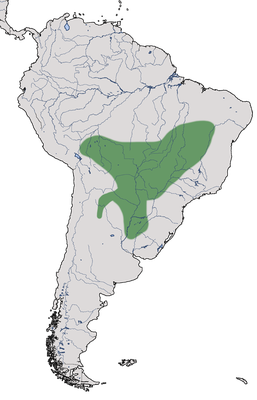 Karte zur Verbreitung des Rotschwingen-Bündelnisters