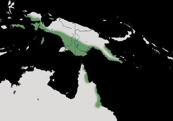 Karte zur Verbreiung des Helmkasuar