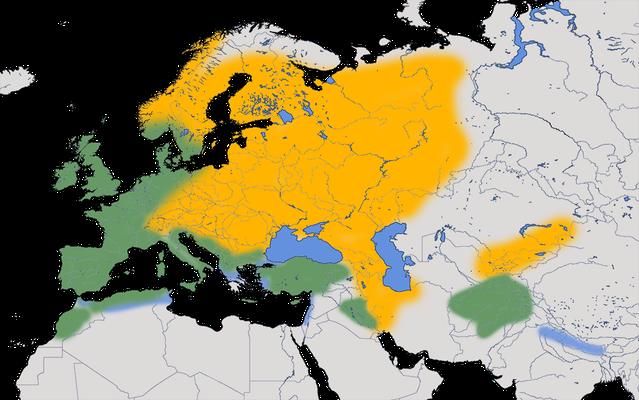 Karte zur Verbreitung der Ringeltaube.