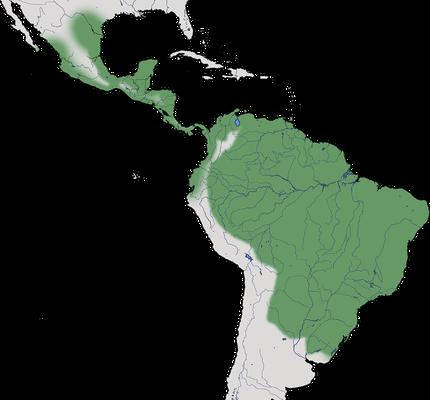 Karte zur Verbreitung der Moschusente