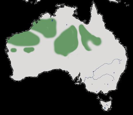 Karte zur Verbreitung des Malerastrilds