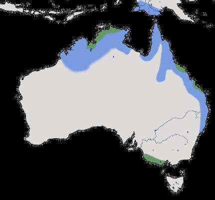 Karte zur Verbreitung der Spaltfussgans