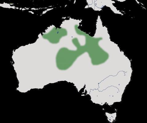 Karte zur Verbreitung der Rotschopftaube (Geophaps plumifera)