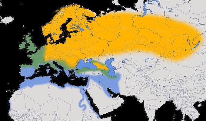 Karte zur Verbreitung der Singdrossel (Turdus philomelos).