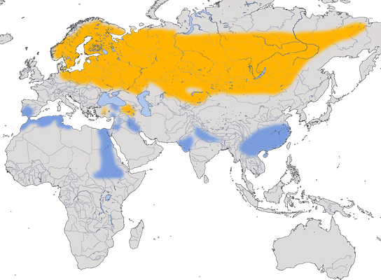 Karte zur Verbreitung des Grauen Kranichs