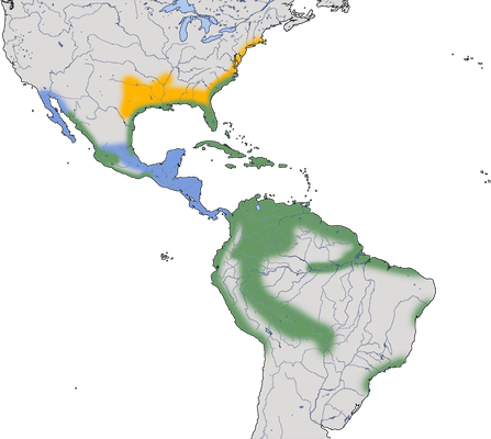 Karte zur Verbreitung des Blaureihers
