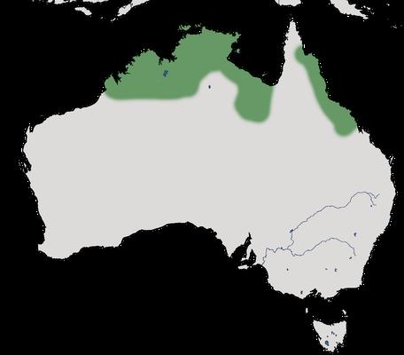 Karte zur Verbreitung des Sonnenastrilds.
