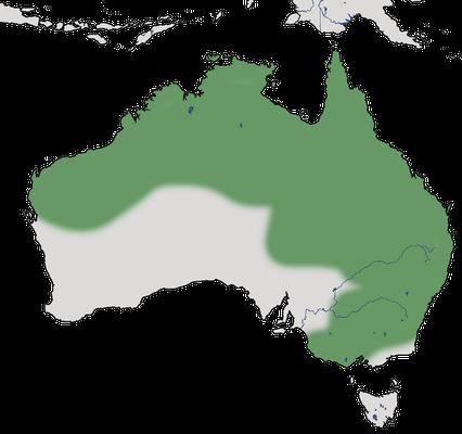 Karte zur Verbreitung der Sichelpfeifgans.