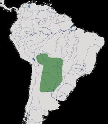 Karte zur Verbreitung des Fuchsroter Baumsteigers