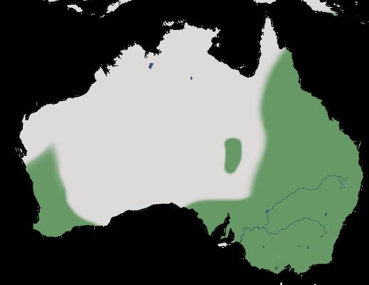 Karte zur Verbreitung der Rosenohrente