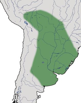 Karte zur Verbreitung des Halsbandwehrvogels.