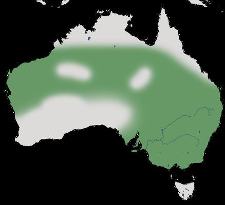 Karte zur Verbreitung des Weißbürzel-Honigfressers