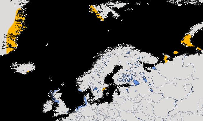 Karte zur Verbreitung der Nonnengans