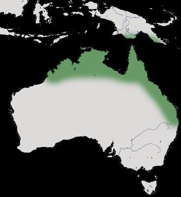 Karte zur Verbreitung des Weißkinn-Honigfressers