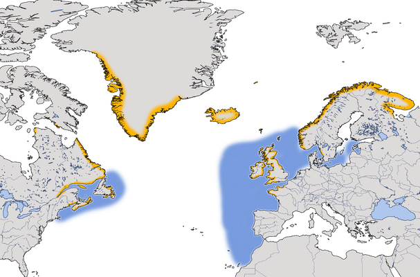 Karte zur Verbreitung der Tordalke