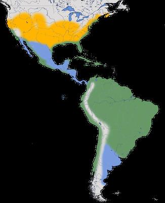 Karte zur Verbreitung des Schmuckreihers.