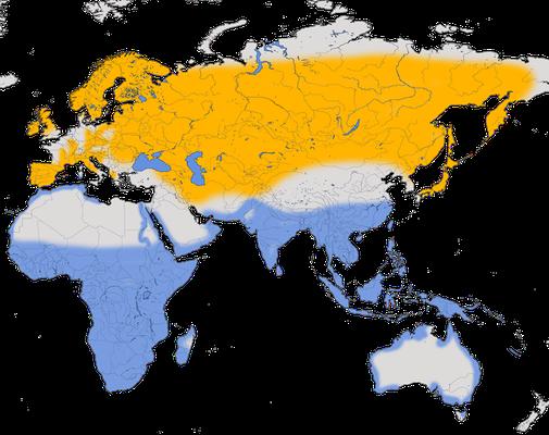 Karte zur Verbreitung des Flussuferläufers