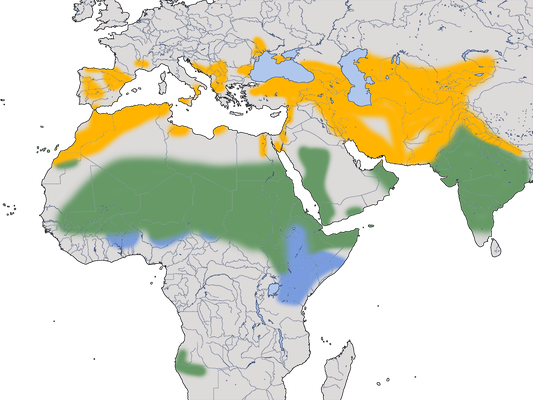 Karte zur Verbreitung des Schmutzgeiers (Neophron percnopterus)