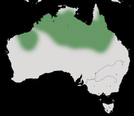 Karte zur Verbreitung des Goldmantel-Honigfressers