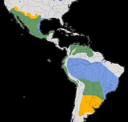 Karte zur Verbreitung des Rubintyranns