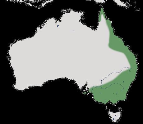Karte zur Verbreitung des Dornastrilds