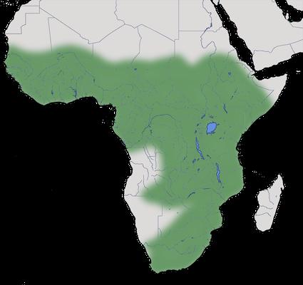 Karte zur Verbreitung des Hagedasch