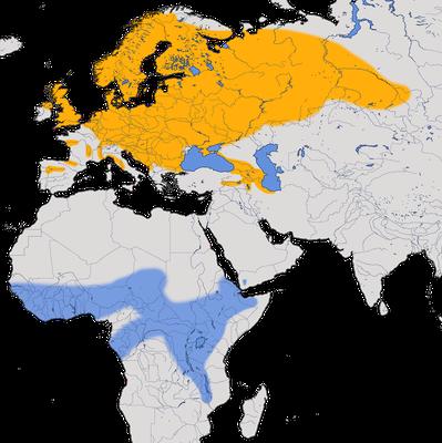 Karte zur Verbreitung des Braunkehlchens.