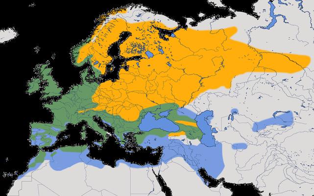 Karte zur Verbreitung des Rotkehlchens