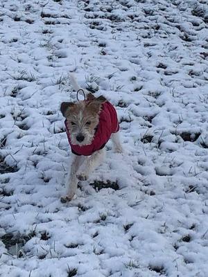 04.12.2019: Agnes hat Spaß im und am Schnee