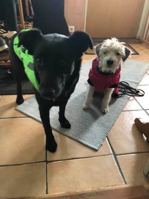Lina & Agnes am 01.12.2019